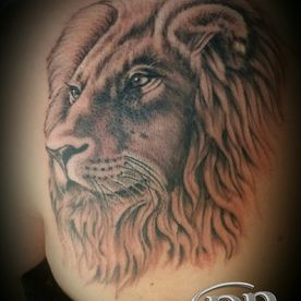 BLACK AND GREY,REALISTISCH,LEEUW,LION,REALISTIC,TATTOO,TATOEAGE